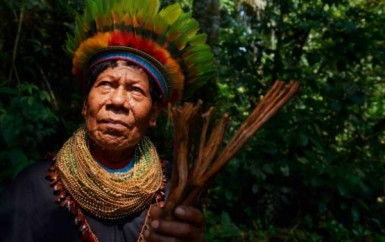 Constitución de Colombia y autoridades indígenas