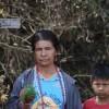 En toda América se pisotean los derechos de los pueblos indígenas