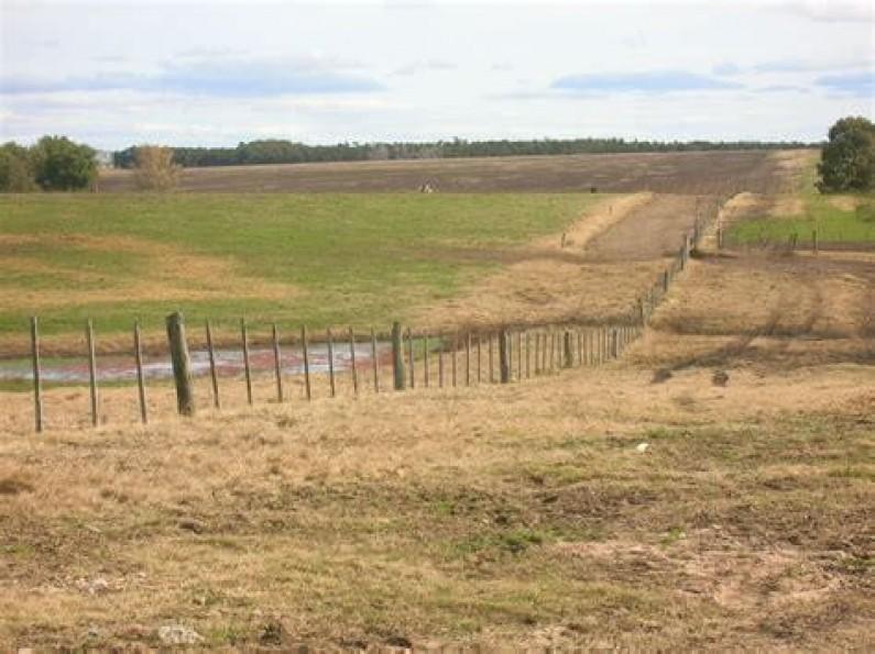 La protesta rural y la lucha por los excedentes en el desarrollo agropecuario