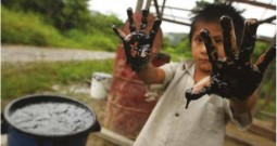 Violación de derechos humanos en la Amazonia